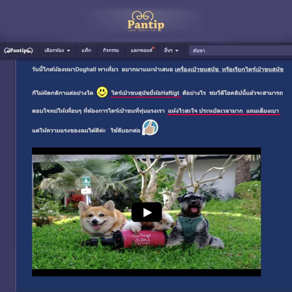 รีวิว ไดร์เป่าขนสุนัข Pantip