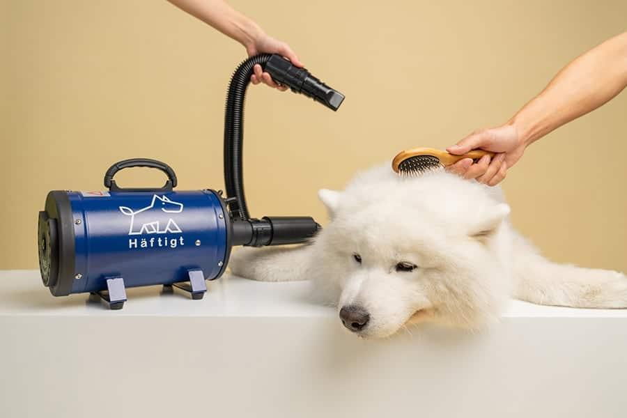 ไดร์เป่าขนสุนัข Haftigt สีน้ำเงิน